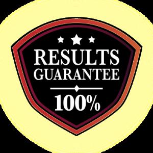 result guarantee website traffic